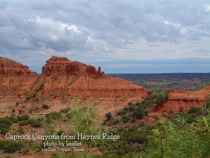 Caprock Canyons by Leaflet