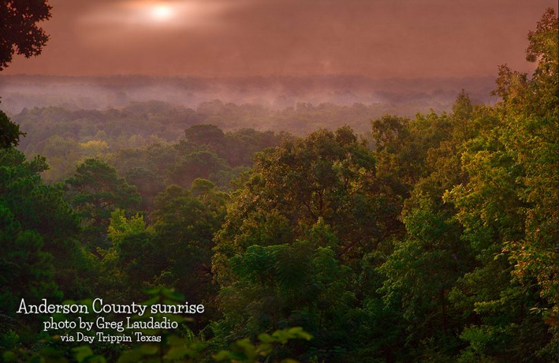 Anderson County Sunrise by Greg Laudadio