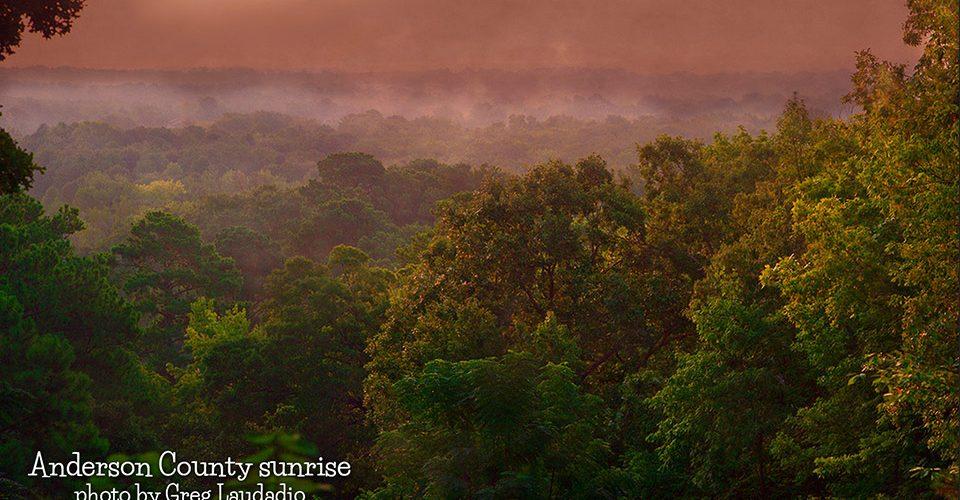 Anderson County Sunrise by Greg Laudadio
