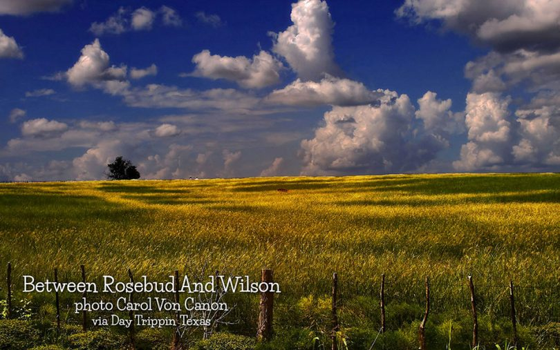 Between Rosebud and Wilson by Carol Von Canon