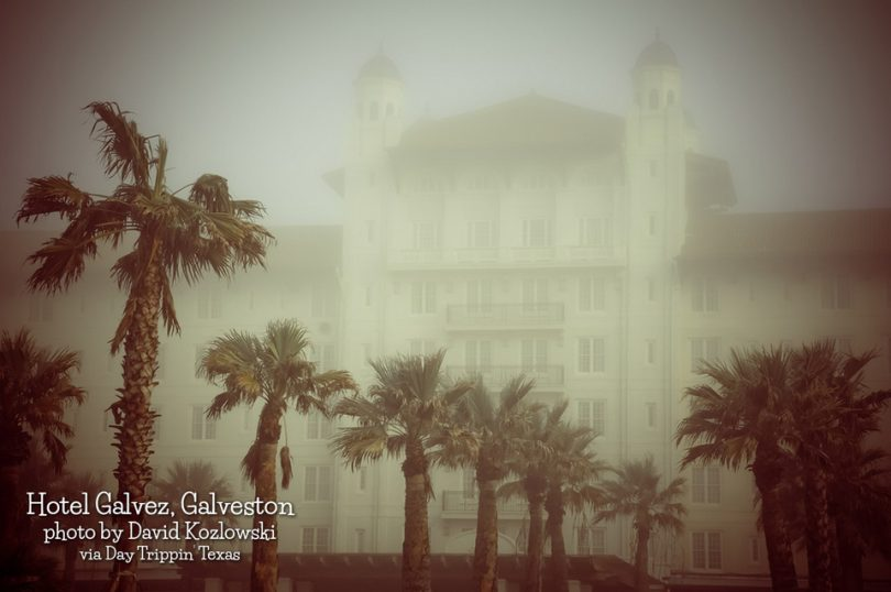 Hotel Galvez in Galveston by David Kozlowski