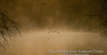 Upper Neches by AndersonCounty-GregLaudadio
