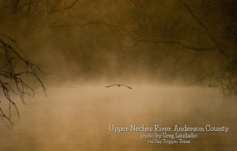 Upper Neches by AndersonCounty-GregLaudadio