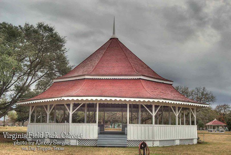 Virginia Field Park in Calvert by Alexey Sergeev