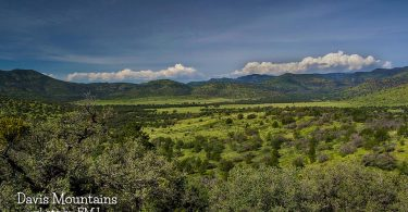 Davis Mountains by FMJ
