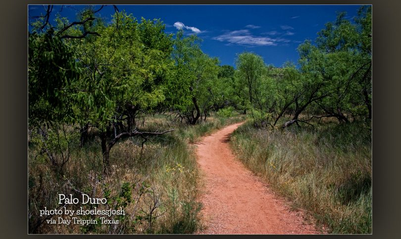 Palo Duro Trail by shoelessjosh